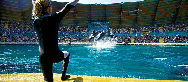 Marineland Antibes