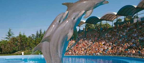 Marineland in Palafolls