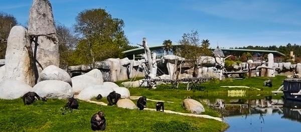 Zoo de La Palmyre in zuidwest Frankrijk