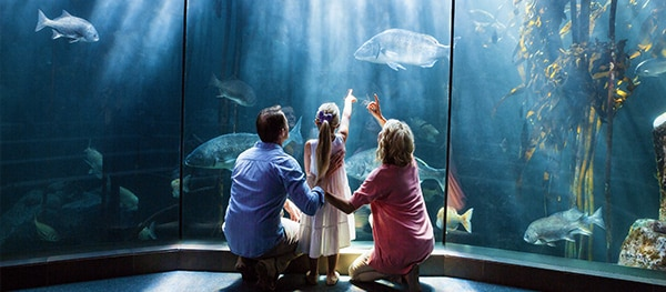 Aquarium Genua in Genua