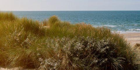 Kamperen aan het strand in Nederland