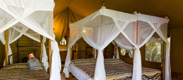 Sleeping under a mosquito net will keep mosquitoes at a distance