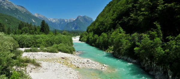 Socarivier Slovenië