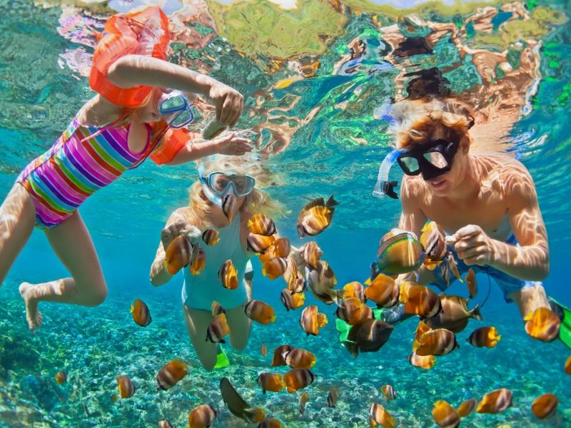 Snorkelen is de makkelijkste manier om het onderwaterleven te ontdekken
