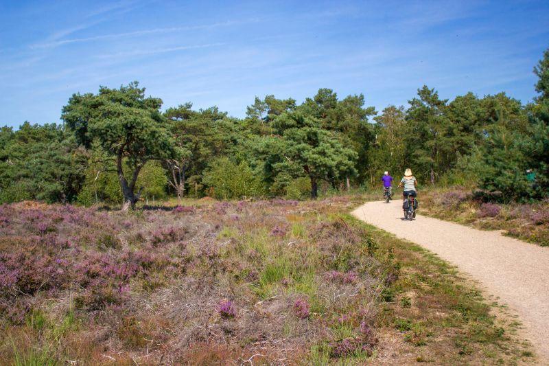 Nationaal Park Maasduinen Limburg